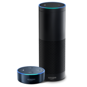 "Amazon Alexa and Echo professionally integrated by digitalliving.com HomeAdvisor ""BEST OF"" 3 Yrs Running"